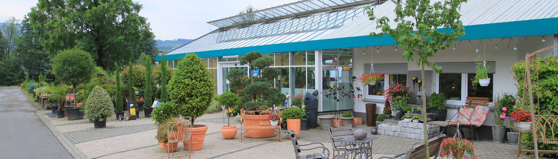 pflanzen-gockel-pflanzencenter-sauerland-001